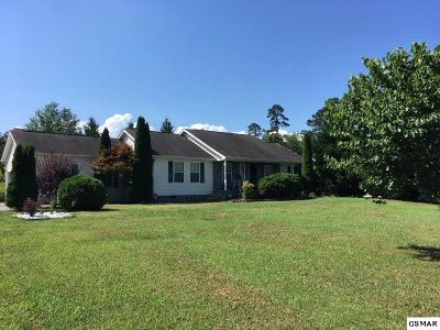 Sevierville Single Family Home For Sale: 2815 English Valley Ln