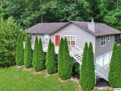 Sevierville Single Family Home For Sale: 3820 Pleasant View Lane