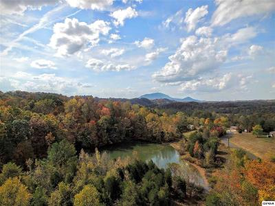Sevierville TN Residential Lots & Land For Sale: $285,000