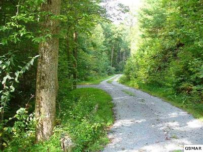 Sevier County Residential Lots & Land For Sale: Paradise Falls Way