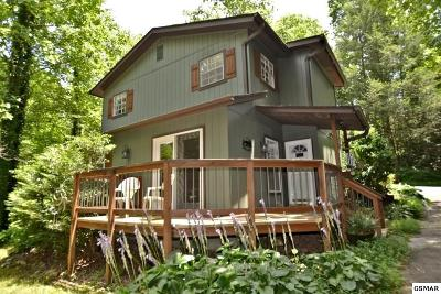 Gatlinburg Single Family Home For Sale: 517 Bettis Drive