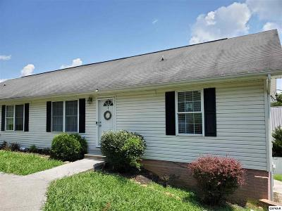Sevierville Condo/Townhouse For Sale: 2904 Boyds Creek Hwy Apt 3