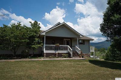 Sevierville Single Family Home For Sale: 160 Estele Dr