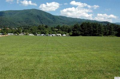 Sevier County Residential Lots & Land For Sale: Lot 2 Wears Valley Rd.