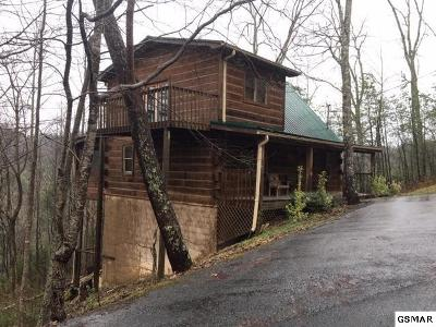 Sevierville Single Family Home For Sale: 745 Ski View Ln