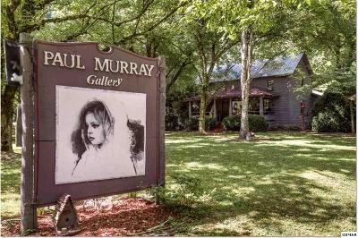 Gatlinburg TN Single Family Home For Sale: $279,900