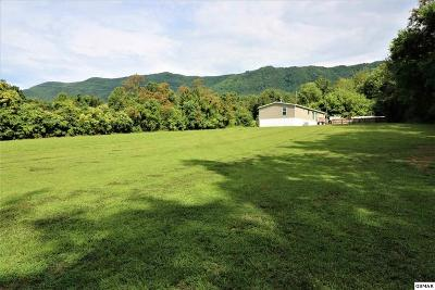 Dandridge Single Family Home For Sale: 3818 Collier Loop