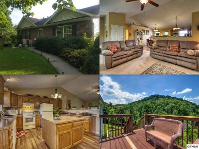 Sevierville Single Family Home For Sale: 3336 Frontier View Dr
