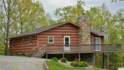 Sevierville Single Family Home For Sale: 1056 Alpine