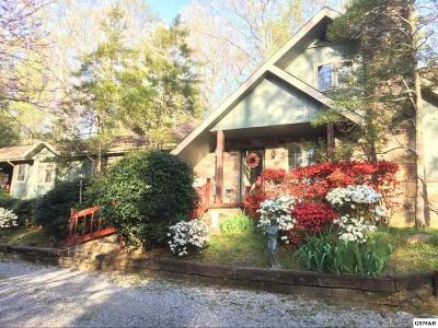 Sevier County Single Family Home For Sale: 1646 Cardinal Dr
