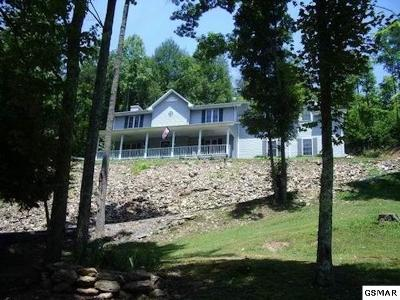Sevier County Single Family Home For Sale: 2673 S Clear Fork Road