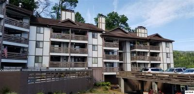 Sevier County Condo/Townhouse For Sale: 616 Turkey Nest Rd
