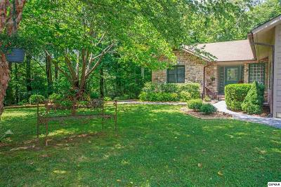 Sevier County Single Family Home For Sale: 2373 Backwoods Way