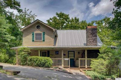 Sevierville Single Family Home For Sale: 2326 Bonnie Lane