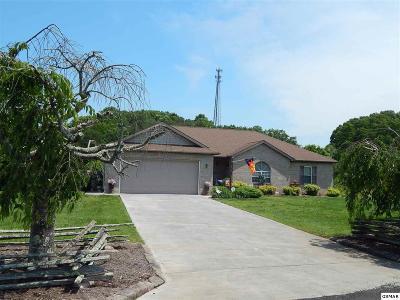 Kodak Single Family Home For Sale: 3036 Sugarwood Dr