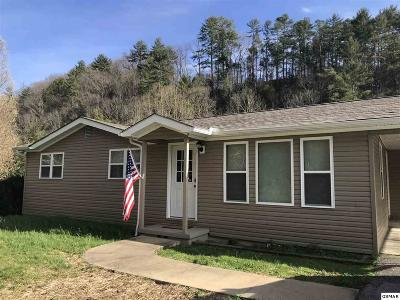 Sevierville Single Family Home For Sale: 1530 Upper Middle Creek Rd