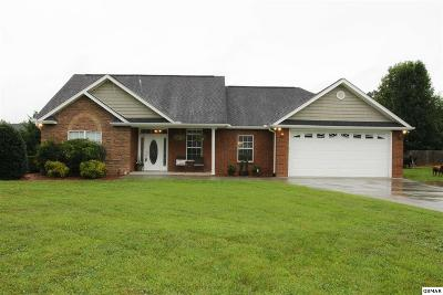 Sevier County Single Family Home For Sale: 1745 Tahoe Trl