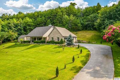 Kodak Single Family Home For Sale: 687 Emerald Ave