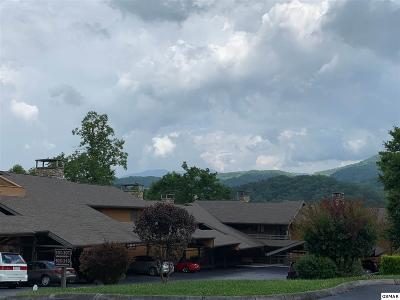 Gatlinburg Condo/Townhouse For Sale: 1824 Oriole Rd.