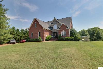 Sevierville Single Family Home For Sale: 2074 James Rd