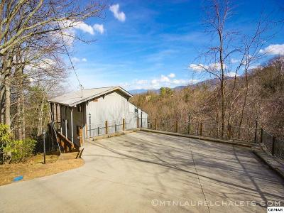 Gatlinburg Single Family Home For Sale: 2024 Tamins Ct S