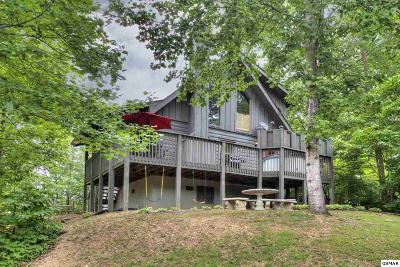 Sevier County Single Family Home For Sale: 3521 Sugar Maple Loop Road
