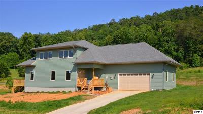 Seymour Single Family Home For Sale: 2003 Bill Hicks