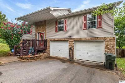Sevierville Single Family Home For Sale: 1441 Jasmine Trl