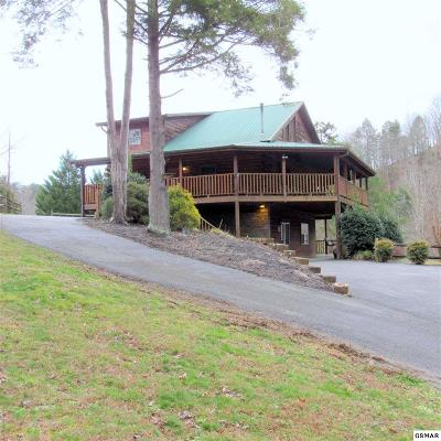 Sevier County Single Family Home For Sale: 1469 Jobey Green Hollow Rd.