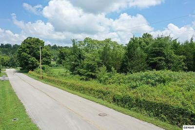 Residential Lots & Land For Sale: Parcel 059.06 Milldale Dr