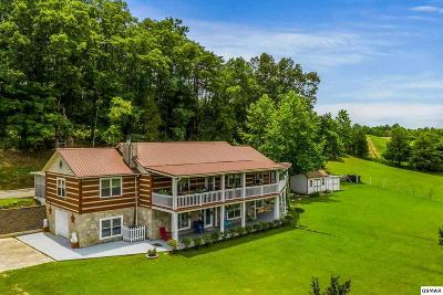 Single Family Home For Sale: 2335 Jim Henry Road