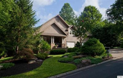 Gatlinburg Single Family Home For Sale: 716 Junglebrook Lane