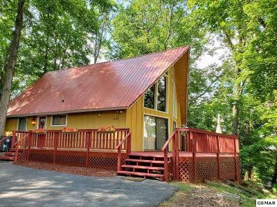 Gatlinburg Single Family Home For Sale: 2135 Luzerne Drive