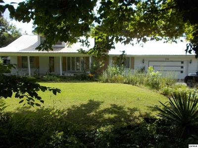 Cocke County Single Family Home For Sale: 775 Highway 107 S