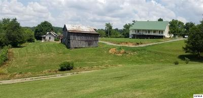 Sevierville Single Family Home For Sale: 1460 Providence Road