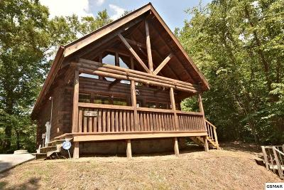 Sevierville Single Family Home For Sale: 524 Hideaway Ridge Circle