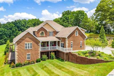 Sevierville Single Family Home For Sale: 1865 Sierra Ln