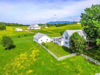 Seymour Single Family Home For Sale: 366 Boling Rd