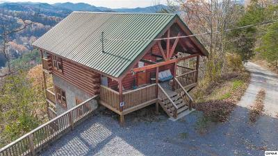 Sevierville Single Family Home For Sale: 1060 Pinecrest Way