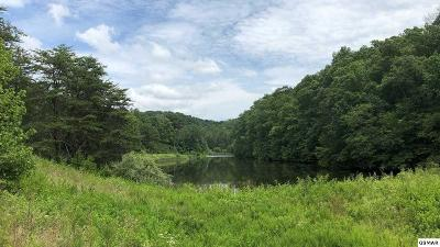 Sevier County Residential Lots & Land For Sale: 4162 Snyder Rd
