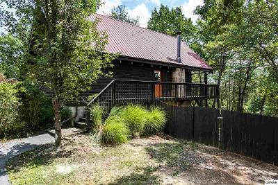 Single Family Home For Sale: 713 W Gold Dust Dr