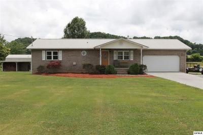Sevierville Single Family Home For Sale: 1076 Valley View Cir