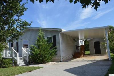 Sevierville Single Family Home For Sale: 1222 Santa Anita Way