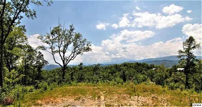 Sevier County Residential Lots & Land For Sale: Winterberry Trail