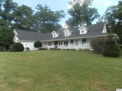 Seymour Single Family Home For Sale: 1178 Butch Bayless Lane