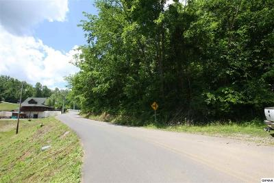 Sevier County Residential Lots & Land For Sale: 1078 Mathews Hollow Rd