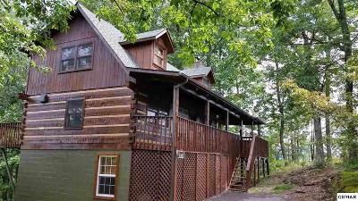 Gatlinburg Single Family Home For Sale: 1126 E Foothills Dr