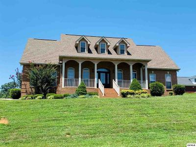 Sevierville Single Family Home For Sale: 1804 Placid Dr