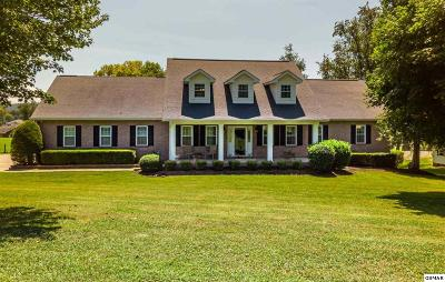 Sevierville Single Family Home For Sale: 1348 Meadowlands Cir