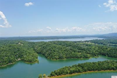 River Front Homes for Sale in Great Smoky Mountains, TN